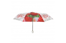 Paraplu Holland tulpen compilatie